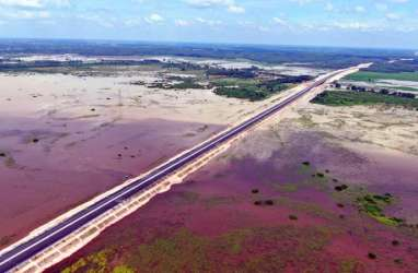 Ada 6 Jalur Perlintasan Gajah di Tol Pekanbaru-Dumai