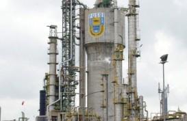 Menperin Kunjungi Jepang, Industri Pupuk Tertekan Beban Gas Alam