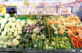 Harga Pangan Faktor Utama Inflasi Selama Ramadan