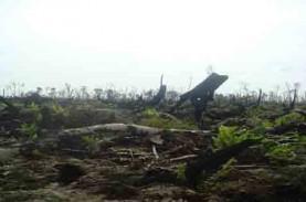 KLHK Dorong Percepatan Administratif Hutan Adat