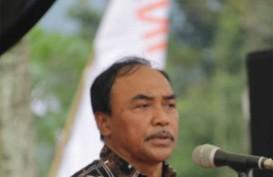 Cara Indonesia Agar Tetap Terbebas Sindrom Kematian Dini Udang