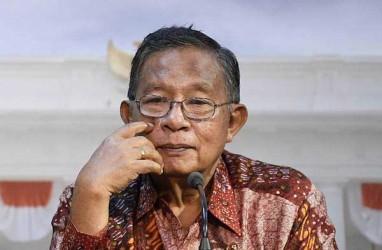 Menurut Darmin Nasution, Ini Masalah Krusial di Sektor Pangan