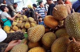 LIBUR LEBARAN : Pemudik Serbu Pedagang Durian di Pesisir Selatan