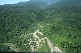 Skema Multi Usaha Bakal Dongkrak Kawasan Hutan Produksi…