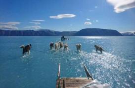 Suhu Meningkat, Lapisan Es di Greenland Mencair Tidak Lazim