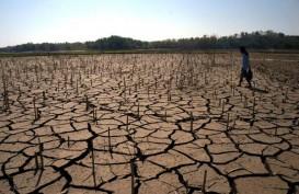 Musim Kemarau: Debit Air Waduk di Jateng Susut 24 persen