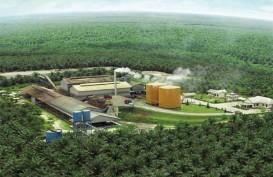 Dirut & Komut PT Eagle High Plantation Tbk (BWPT) Mengundurkan Diri Jelang RUPST