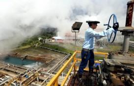 PLN Tolak Garap Panas Bumi di 5 Lokasi