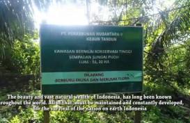 PTPN V Resmi Kembalikan 2.800 Hektare Lahan kepada Negara