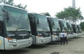 Kemenhub Siapkan Opsi Bus PPD Gantikan Damri di Bandara