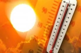 Cuaca di Makkah Lebih dari 40 Derajat Celsius, Calon…