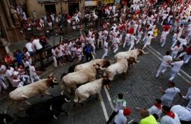 Hari Kelima Festival Lari Banteng San Fermin, 7 Peserta Terluka