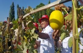 Kembangkan Florikultura, Petrokimia Gresik Perbesar Pasar Pupuk Non Subsidi