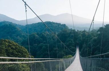 Jembatan Gantung Situ Gunung Dongkrak PNBP Gunung Gede Pangrango