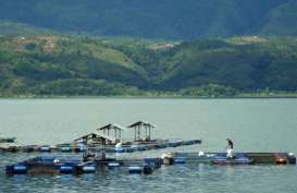 Cegah Penangkapan Ikan Menggunakan Bom, DKP Sumbar Siap Lakukan Razia di Danau Singkarak