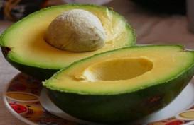 7 Camilan Sehat yang Dapat Singkirkan Lapar