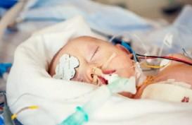 Setahun, 50 Ribu Bayi Lahir dengan Penyakit Jantung Bawaan