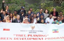 Ramai-ramai Tanam Pohon untuk Penghijauan di KBRI Addis Ababa