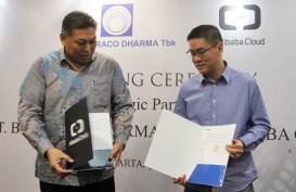 Market Share Bintraco Dharma (CARS) Stabil 30 Persen