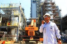Gandeng Mubadala Bangun Pabrik Petrokimia, Ini Kata…