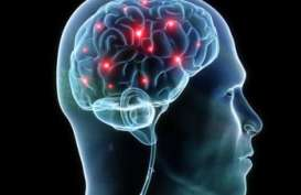 Penyakit Jantung Percepat Penurunan Fungsi Kognitif Otak
