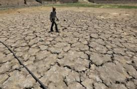BNPB Tetapkan 55 Wilayah Berstatus Siaga Darurat Kekeringan