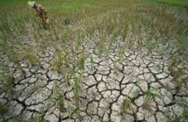 DAMPAK KEKERINGAN : BPBD Banyumas Salurkan 890.000 Liter Air Bersih