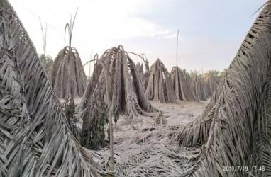 Pemkab Muba Tutup Semburan Lumpur di Kaliberau