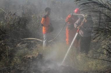 Cegah Kebakaran Hutan dan Lahan, APP Sinar Mas Alokasikan Dana Rp300 Miliar