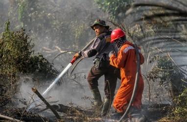 Antisipasi Karhutla, BNPB Tempatkan 1.512 Personel di 100 Desa/Kelurahan Kalteng
