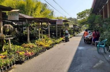 Pedagang Pasar Bunga Madiun Enggah Direlokasi, Takut Rugi