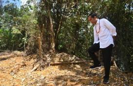 Begini Kata Menteri PUPR Terkait dengan Rencana Peletakan Batu Pertama Ibu Kota Baru