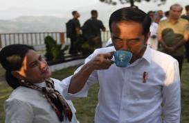 Jokowi  Cabut Izin Perusahaan yang Cemari Danau Toba