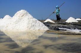 Produksi Garam di Karawang Terhenti Akibat Tumpahan Minyak