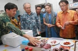 Perikanan Nusantara Ekspor 250 Ton Gurita ke Jepang hingga Juli 2019