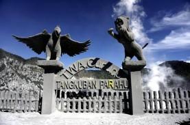 Status Gunung Tangkuban Parahu Naik ke Level Waspada