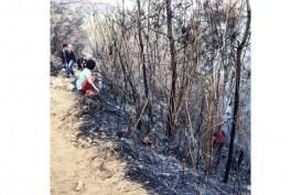 Pemadaman Kebakaran Gunung Arjuno Terhambat Angin Kencang