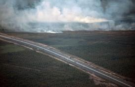 Tol Palindra Dikepung Api Kebakaran Lahan