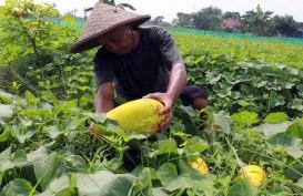 Kementan Lepas Ekspor Produk Pertanian Senilai Rp1,1 Triliun