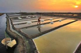 Pacu Serapan, Kualitas Garam Lokal Harus Ditingkatkan
