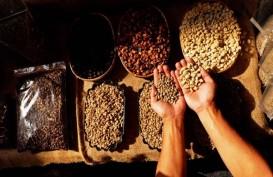 Dorong Entrepreneur Kopi Sumatra dari Hulu