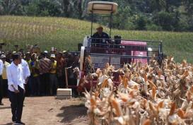 RPJMN 2020-2024 Tunjuk Gorontalo sebagai Sentra Produksi Pangan Sulawesi