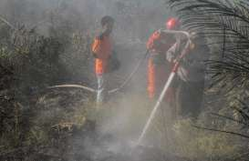 Polda Riau Tetapkan PT SSS Sebagai Tersangka Pembakaran Hutan