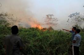Gunung Guntur Diduga Sengaja Dibakar, Ini Penjelasan Polisi