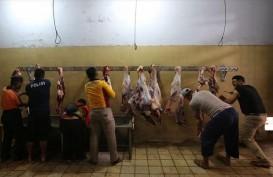 Momentum Iduladha, Pemotongan Hewan di RPH Ciroyom Meningkat