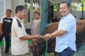 Rayakan Idul Adha, Patra Semarang Sembelih Sap i&…