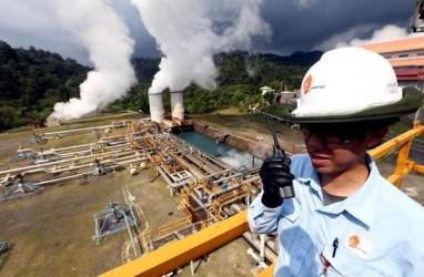 Pengembangan Energi Panas Bumi Butuh Dukungan Pemerintah