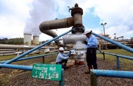 Pemerintah Targetkan Kapasitas Terpasang PLTP 2.133,5 MW pada Tahun Ini