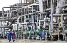 Green Refinery di Kilang Dumai dan Plaju Bakal Serap 1 Juta Ton CPO Per Tahun