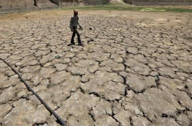 BPBD Prediksi Kekeringan di Wilayah Bogor akan Meluas